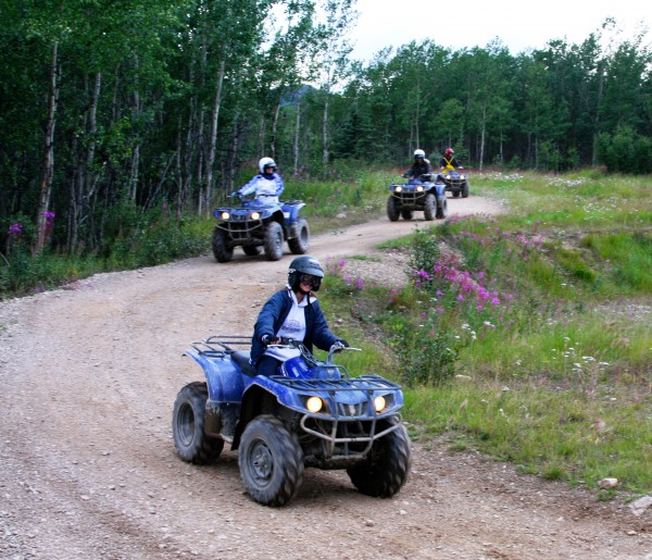 ATV in Denali