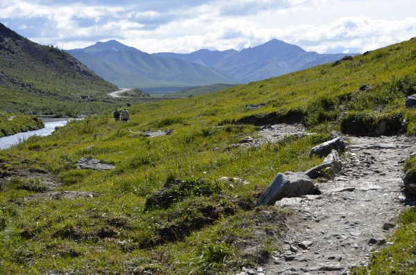 Hiking Denali Park Savage River